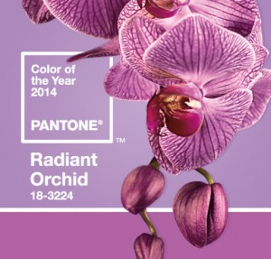 2014 Color of the Year named, pastels back for spring fashion