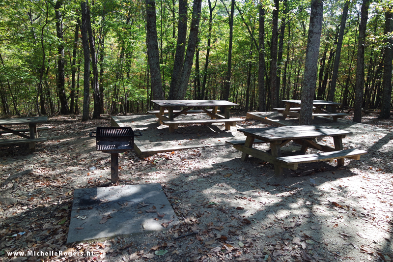 A picnic area is located near the trail entrance, which is convenient to the main parking lot and Visitor's Center.