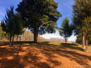 Blackwood Farm Park, Hillsborough NC - Michelle Rogers Healthy Living