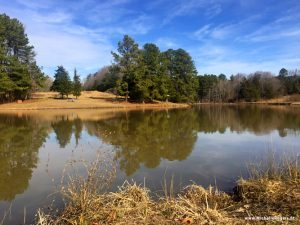 Photo tour: A winter hike at Blackwood Farm Park in Hillsborough, NC