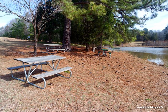 Blackwood Farm Park, Hillsborough NC - Michelle Rogers Healthy Living