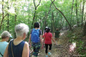 Ladies, let's walk together!