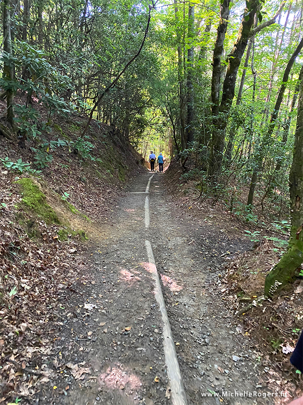 Waterfall trail - Michelle Rogers Healthy Living